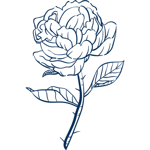 fleurs communication digitale prestations