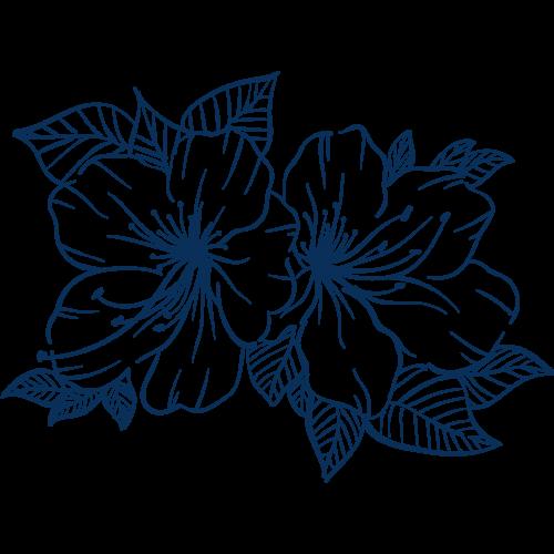 fleurs 3 communication digitale prestations
